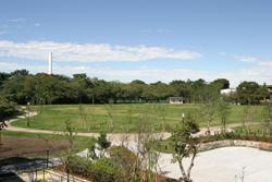 写真:柏の宮公園
